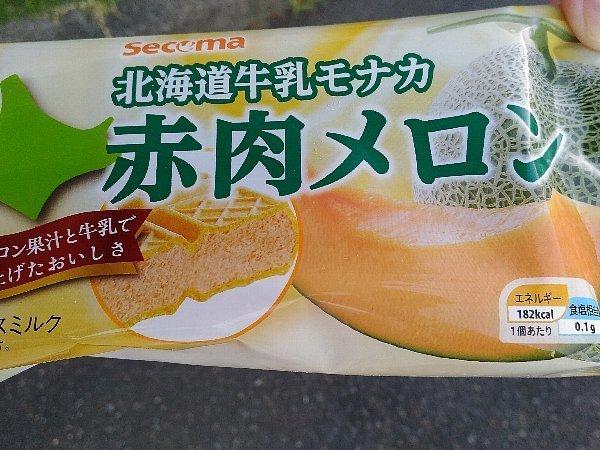 160821_secoma 赤肉メロン.jpg